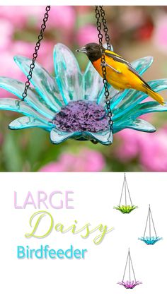 This daisy-shaped bird feeder will have all the songbirds flocking right outside your window. Choose your favorite color to instantly enhance your garden decor.