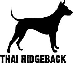 Thai Ridgeback Decal - Outdoor Vinyl