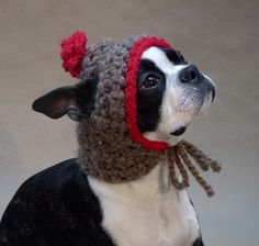 This kind of reminds me of Dude. Me and Lori were talking about a hat like this earlier.