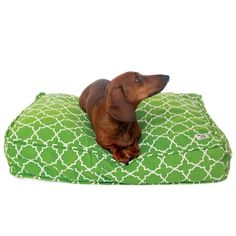 Molly Mutt Duvet covers and stuff sack- eco friendly dog beds you stuff with your old linens and stuffing