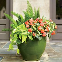 Bring On the Sun - Spectacular Container Gardening Ideas - Southern Living