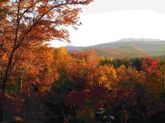Fall is a glorious time to visit the Smokies as you can see from this view from Buckhorn Inn's Terrace. The inn is in Gatlinburg, TN.