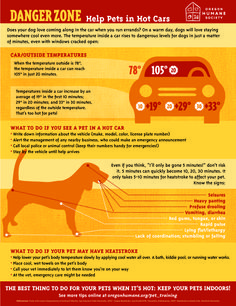 It's getting hot out there. Keep pets safe! What to do if you see a pet trapped in a hot car and if a pet has heatstroke!