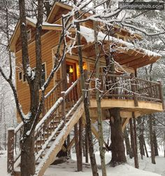 Tree House New England | Glamping Treehouse New England