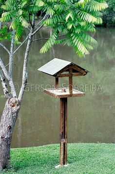Bird Feeder Plans, Bird House Feeder, Leaf Projects, Outdoor Projects, Christmas Pebble Art, Wooden Bird Feeders, Bird Tables, Garden Solutions, Bamboo Art