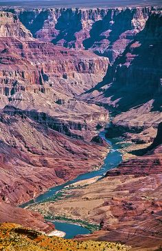 Colorado River, Grand Canyon National Park  A trip I could actually take someday. Goooo, national parks!
