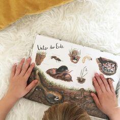 """Die kleinen Dinge on Instagram: """"Unter der Erde 💛 Es gibt ja so viel zu entdecken im schönen Naturlexikon von Brigitte Baldrian 💛 Ihr findet es im Shop 💛 Link im Profil 💛…"""" Shops, Link, Illustration, Instagram, Profile, Little Ones, Little Things, Earth, Do Your Thing"""