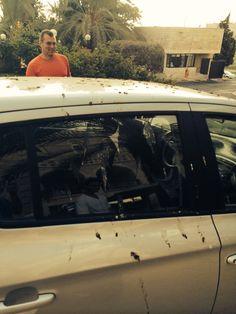 Bird issue on rental car...