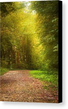 Solitude Path Canvas Print by Christina Rollo. All canvas prints are professionally printed, assembled, and shipped within 3 - 4 business days and delivered ready-to-hang on your wall. Choose from multiple print sizes, border colors, and canvas materials.