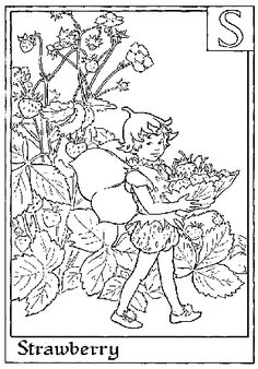 coloring sheets, fairy coloring page, flower fairy I was OBSESSED with Flower Fairies when I was a kid in the 80s!