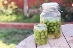 Homemade Salt Cured Olives- My favorite way to prepare fresh olives
