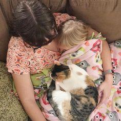 Website Traffic - sleep #sleep #insomnia #treatment #remedies