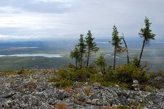- Landscapes from Finland's Lapland and Levitunturi. Lapland Finland, City Landscape, Lake District, Summer Activities, View Image, Ancestry, Norway, Sweden, Travel Destinations