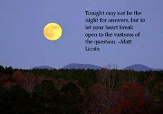 Matt Licata