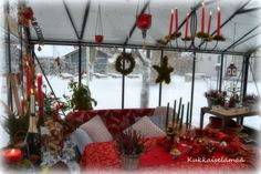 Jouluttelua kasvarissa - Christmas time in the greenhouse Christmas Time, Ladder Decor, Free, Home Decor, Lawn And Garden, Decoration Home, Room Decor, Home Interior Design, Home Decoration
