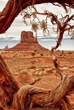 Landscape Photography, Nature Photography, Travel Photography, Photography Tips, Wedding Photography, Parc National, National Parks, Pics Art, Nature Pictures