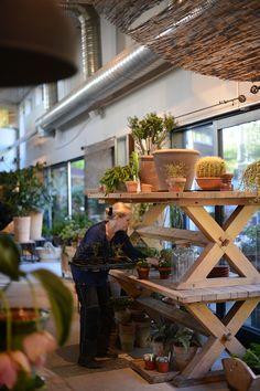 Zeta & # s Garden Garden Center Displays, Garden Centre, Apartment Patio Gardens, Dinning Room Tables, Garden Shop, I Cool, Store Displays, Outdoor Gardens, Outdoor Living