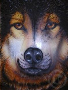 How to paint a wolf portrait with the airbrush. The airbrush isn't just for t-shirts. You can do fine art as well. This step by step tutorial will show you every step I did to render this wolf portrait.