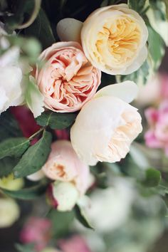 i think these are garden roses and we are OBSESSED. #roses #weddingflowers http://www.weddingchicks.com/2013/11/14/sveti-stefan-island/