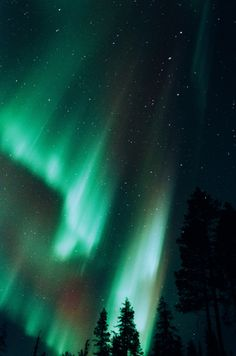 magicalnaturetour:   Untitled by Lucas Marcomini    Via Flickr: Northern Lights in Ylläs, Finland