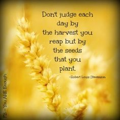 """""""Don't judge each day by the harvest you reap but by the seeds that you plant."""" - Robert Louis Stevenson Galations 6:9; 2 Corinthians 9:6-8"""