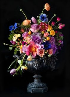 Arrangement & Urn, Bloom by Anuschka. I absolutely love flowers on a black background ~ this is breathtaking!
