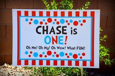 First Birthday/Dr. Seuss Birthday Party Ideas | Photo 1 of 16