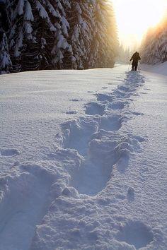 #1 Someone snowshoeing