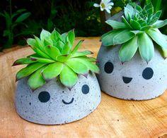 Adorable little concrete planters