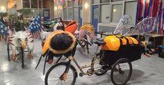 Bee Art Bike Parade Float Mutant Vehicle   Bee art, Bike parade ...