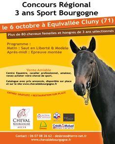 Concours hippique régional des 3 ans de sport, le mardi 6 octobre 2015 à Équivallée Cluny.