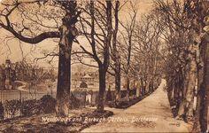 Postcards of Dorchester Dorset England The Walks