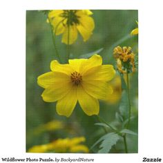 Wildflower Photo Puzzle. Jigsaw Puzzle