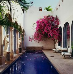 brilliant blue water against a beautiful courtyard in cream w/hot pink flowering tree.....beautiful #mexico