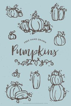 "FREE Pumpkin Clip Art - Designs By Miss Mandee. 10 hand drawn harvest graphics that are perfect for any fall design. After all, what says ""fall"" better than pumpkins?"