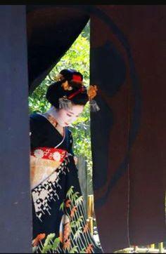 芸妓さんと舞妓さんのブログ (June maiko Konami of Gion Kobu on the day of. Japanese Geisha, Japanese Beauty, Japanese Kimono, Japanese Art, Japanese Things, Japanese Style, Kabuki Costume, The Last Samurai, Zen Gardens