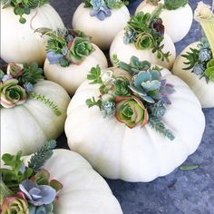 This combines two of our favorite things: pumpkins and succulents, making the most perfect fall decor craft we've ever seen.