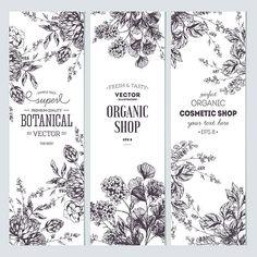 New garden illustration vector clip art ideas Illustration Botanique, Garden Illustration, Botanical Illustration, Soap Packaging, Packaging Design, Photos Free, Floral Banners, Garden Drawing, 2 Logo