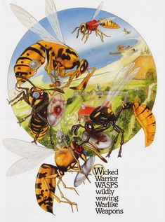WICKED WARRIOR WASPS WILDLY WAVING WARLIKE WEAPONS BY GRAEME BASE