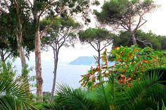 Parc du chateau de la Clapière - Palmeraie exeptionnel et vue mer