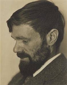 Artwork by Edward Weston, D.H. Lawrence, Made of Gelatin silver print