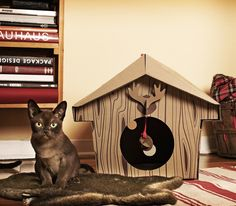 Fancy - Canadian Cabin Cat House I have this and my boy cat has made it his man cave - he spends alot of time in there! Crazy Cat Lady, Crazy Cats, Canadian Cat, Cat Habitat, Diy Teepee, Cat Toilet Training, Boy Cat, Healthy Pets, Little Critter
