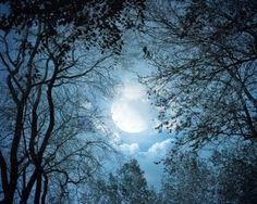 ESSENCETIAL LIFE: FULL MOON BLESSINGS! March 2015