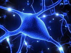 El 18 de diciembre se ha celebrado en nuestro país el Día Nacional de la Esclerosis Múltiple (EM). Esta enfermedad crónica del Sistema Nervioso Central, está presente en todo el mundo y es una de las enfermedades neurológicas más comunes entre la población. Sus síntomas comprenden fatiga, dolor, pérdida del equilibrio, alteraciones visuales y cognitivas, dificultades en el habla y temblor, entre otros.