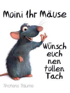 Moin ihr Mäuse