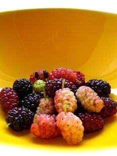 berries by anita
