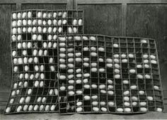 KIYOSHI NIIYAMA. Cocoons, 1937-1945, gelatin silver print, printed ca. 1937-1945. signed by the son Youichi Niiyama. 17,8 x 25 cm © Estate of the Artist