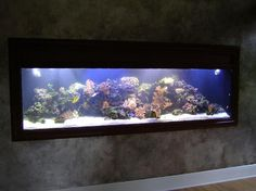 Fish tank in the wall!! I had one 1/2 this size (135 gallon) downstairs. I MISS IT and will get it back someday.