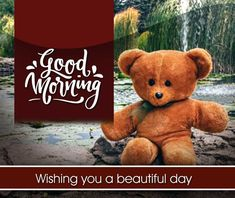 Best Beautiful Good Morning Images Best Collection Only Good Morning Images Beautiful Good Morning Wishes, Lovely Good Morning Images, Good Morning Love Messages, Latest Good Morning, Good Morning Photos, Good Morning Flowers, Morning Pictures, Hello Quotes, Morning Greetings Quotes
