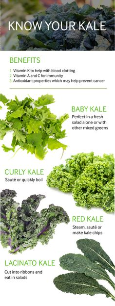 Well Do You Know Your Kale? The Difference Between Kale TypesThe Difference Between Kale Types Vegetarian Recipes Easy, Real Food Recipes, Kale Recipes, Kale Benefits, Benifits Of Kale, Vegetable Benefits, Healthy Salads, Healthy Eating, Healthy Food